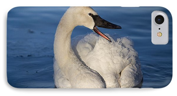 IPhone Case featuring the photograph Happy Swan by Patti Deters