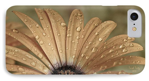 Happy To Be A Raindrop IPhone Case by Trish Tritz