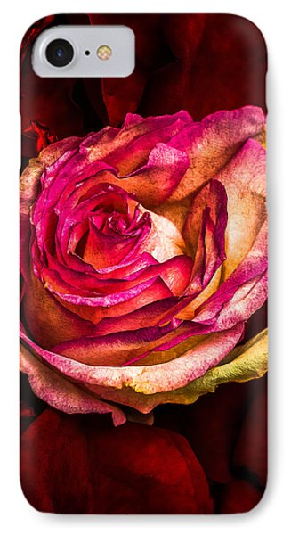 Happy Valentine's Day - 1 Phone Case by Alexander Senin