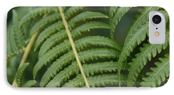 Hapuu Pulu Hawaiian Tree Fern IPhone Case by Sharon Mau
