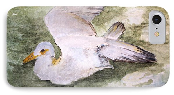 Harbor Sea Gull IPhone Case by Carol Grimes