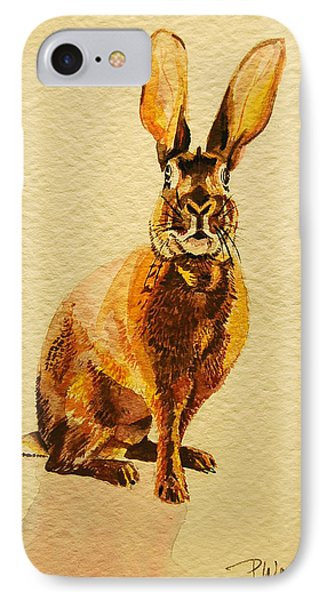 Hare IPhone Case by Pattie Wall