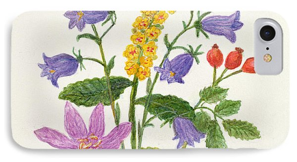 Harebells And Other Wild Flowers  IPhone Case by Ursula Hodgson