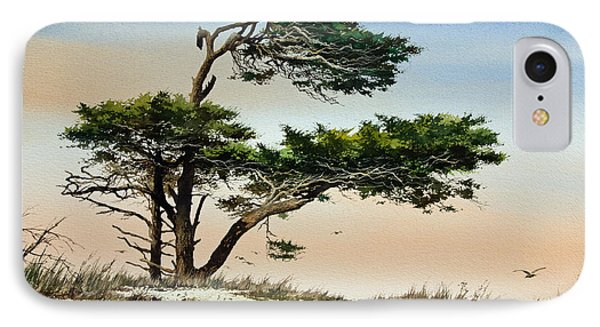 Harmony Of Nature IPhone Case by James Williamson