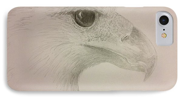 Harpy Eagle Study IPhone Case by K Simmons Luna