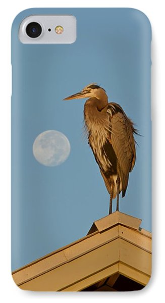 IPhone Case featuring the photograph Harry The Heron Ponders A Trip To The Full Moon by Jeff at JSJ Photography