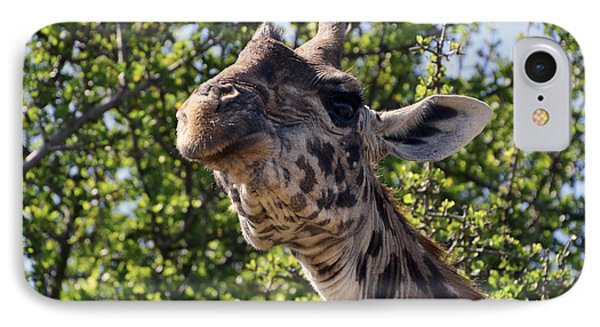 IPhone Case featuring the photograph Haughty Giraffe by AnneKarin Glass