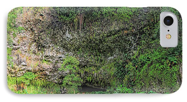 Hawaii Fern Grotto Phone Case by C H Apperson