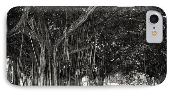 Hawaiian Banyan Tree Root Study Phone Case by Daniel Hagerman