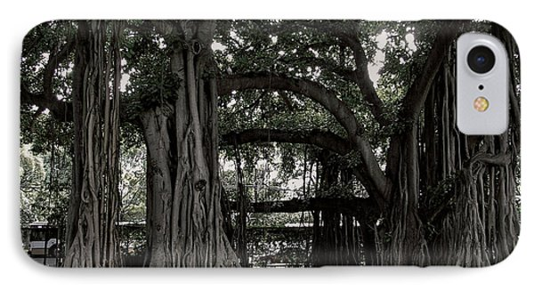 Hawaiian Banyan Trees Phone Case by Daniel Hagerman