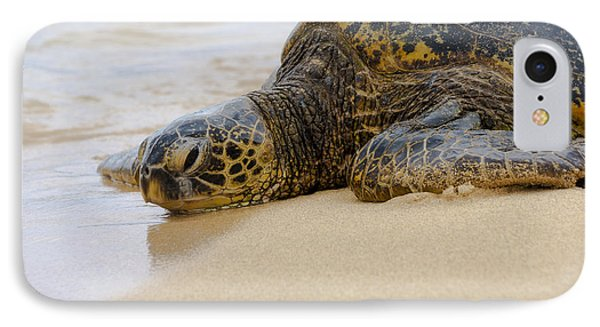 Hawaiian Green Sea Turtle 3 Phone Case by Brian Harig