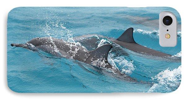 Hawaiian Spinner Dolphin / Stenella IPhone Case