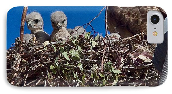 IPhone Case featuring the photograph Hawk Babies by Brian Williamson