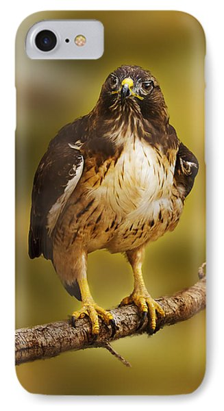 IPhone Case featuring the photograph Hawk  by Brian Cross