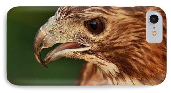Hawk Eyes IPhone 7 Case by Dan Sproul