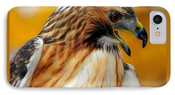 Hawk Hunt IPhone Case by Adam Olsen