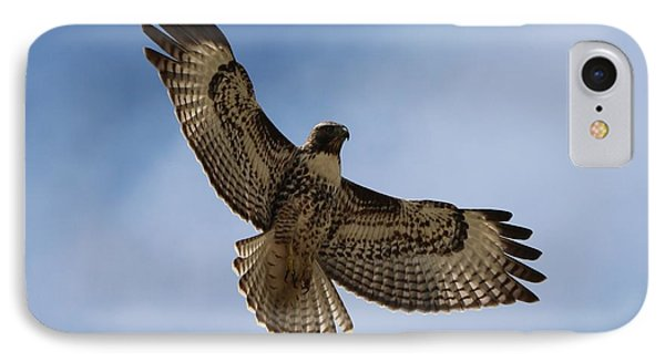 IPhone Case featuring the photograph Hawk In Flight  by Christy Pooschke