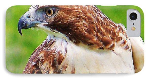 Hawk Is Focused IPhone Case