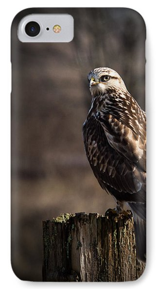 Hawk On A Post IPhone Case by Randy Hall