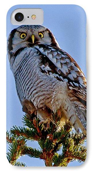 Hawk Owl Square IPhone Case by Torbjorn Swenelius