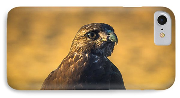 Hawk Stare Phone Case by Marc Crumpler