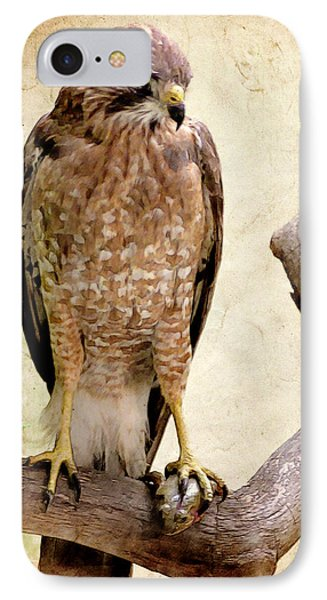 Hawk With Fish Phone Case by Ray Downing