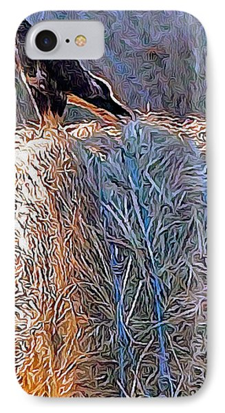 Hay Bale Hawk IPhone Case by Jim Pavelle