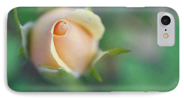 IPhone Case featuring the photograph Hazy Rosebud Squared by TK Goforth