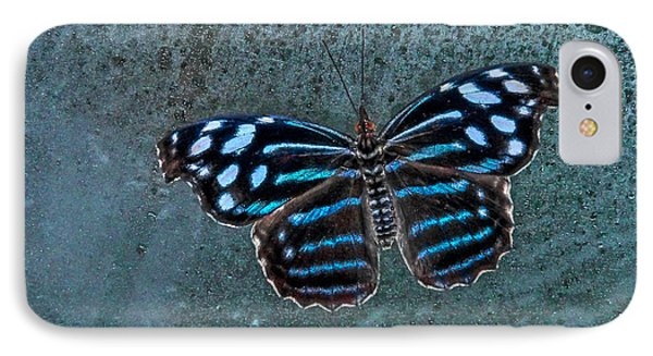 Hdr Butterfly IPhone Case by Elaine Malott