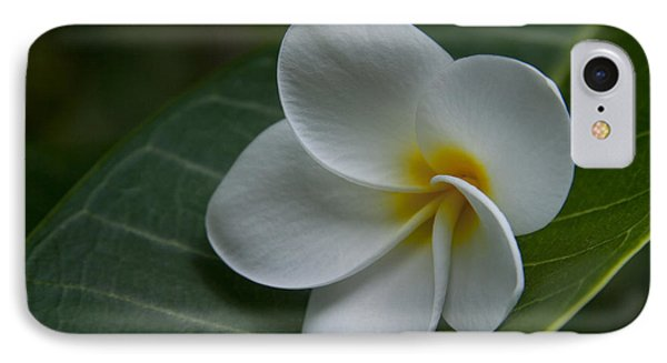 He Aloha No O Waianapanapa - White Tropical Plumeria - Maui Hawaii Phone Case by Sharon Mau