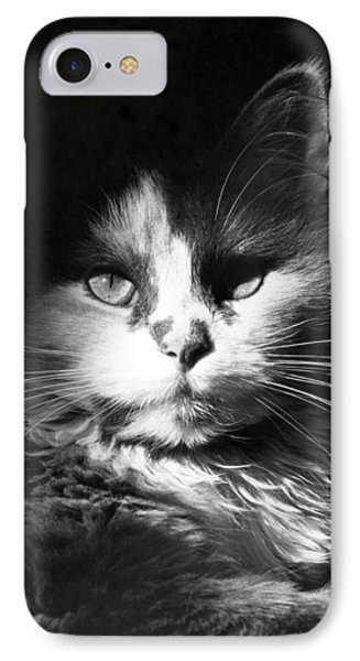 Head Shot Of Black & White Cat IPhone Case by Underwood Archives