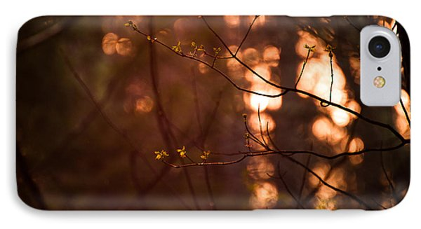 IPhone Case featuring the photograph Healing Light by Haren Images- Kriss Haren