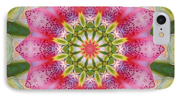 Healing Mandala 25 Phone Case by Bell And Todd