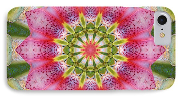 IPhone Case featuring the photograph Healing Mandala 25 by Bell And Todd