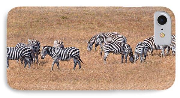 Hearst Castle Zebras Phone Case by Lynn Bauer