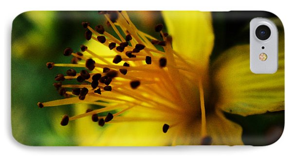 IPhone Case featuring the photograph Heart Of A Flower by Zinvolle Art