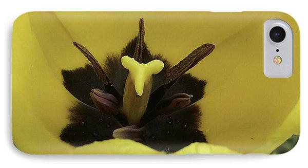 Heart Of The Tulip Phone Case by Arlene Carmel