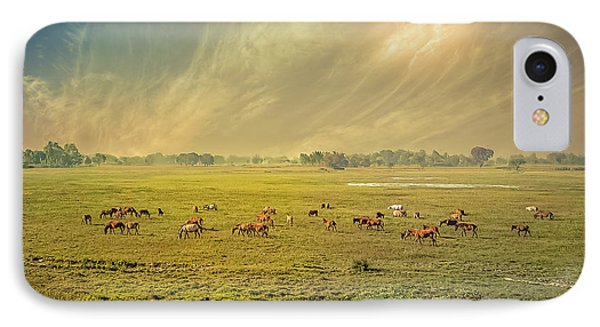 Heat N Dust - Indian Countryside IPhone Case