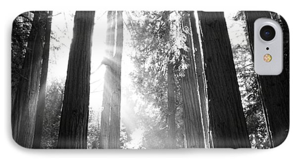 Heavenly Forest IPhone Case