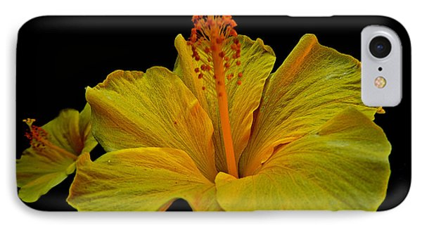 Heavenly Hibiscus IPhone Case by Eve Spring