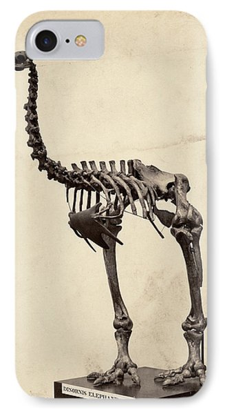 Heavy-footed Moa IPhone Case by Natural History Museum, London