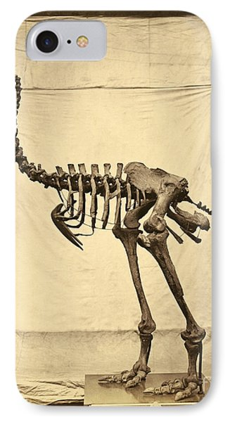 Heavy Footed Moa Skeleton IPhone Case by Getty Research Institute