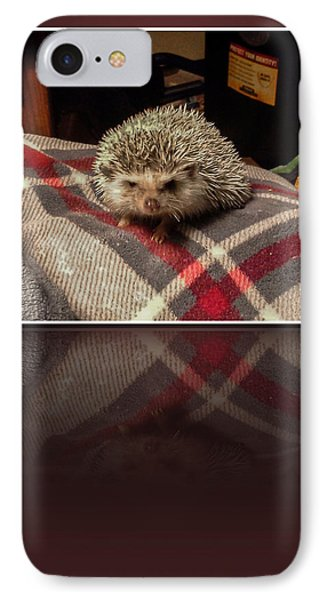 Hedgehog 5 IPhone Case