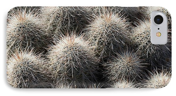 Hedgehog Cactus IPhone Case by Avian Resources