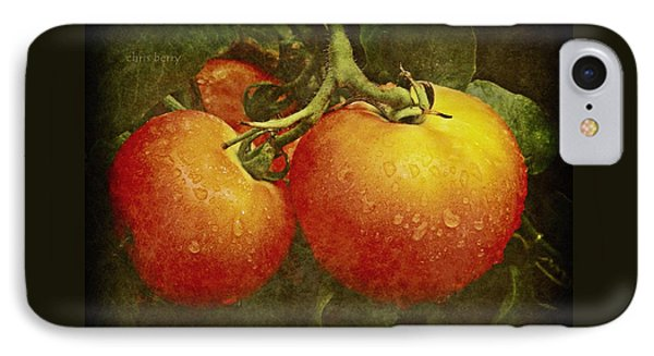 Heirloom Tomatoes On The Vine IPhone Case by Chris Berry