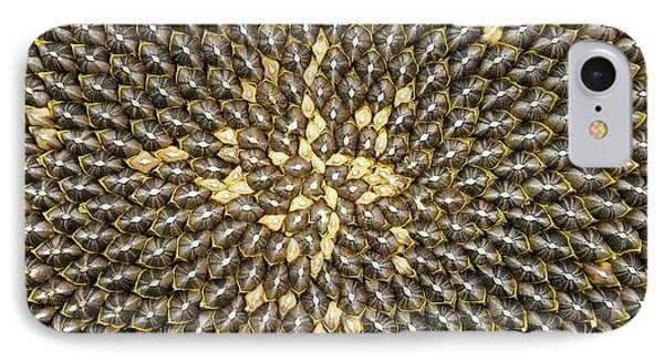 Helianthus Sunflower Seeds Close Up IPhone Case by Mark Sykes