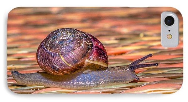 IPhone Case featuring the photograph Helix Aspersa by Rob Sellers