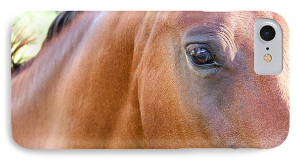 IPhone Case featuring the photograph Hello Beauty by Roselynne Broussard