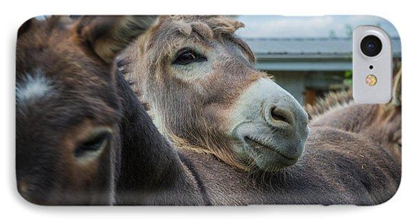 Hello Donkey IPhone Case