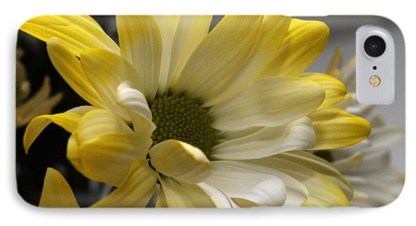 IPhone Case featuring the photograph Hello Sunshine by Wanda Brandon
